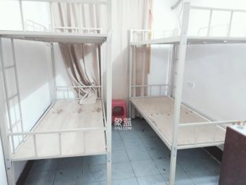省水院宿舍  2室2厅1卫    2500.0元/月