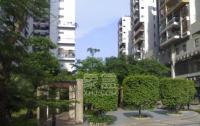 三角花園星城
