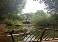 上海城小区