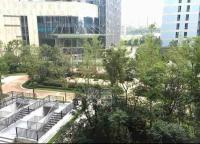 绿地中央广场