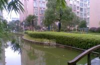 仁和雨花家園