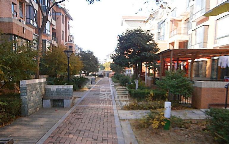 东业早安星城环境图