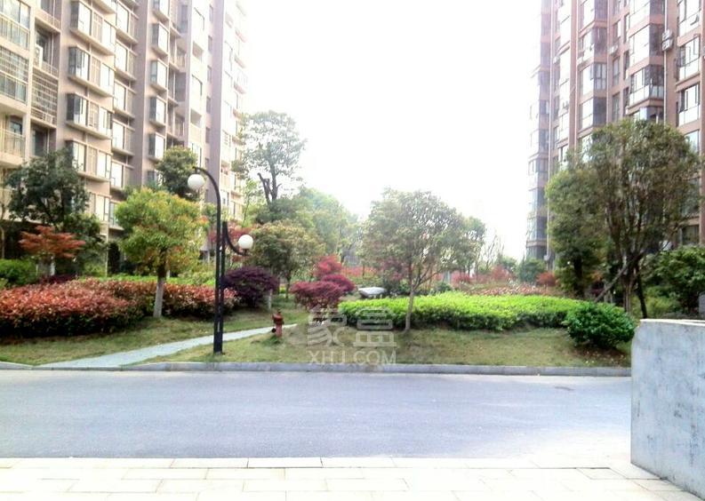 天济山庄(将爱公寓)环境图