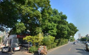 红旗广场 车管所对面 御景东方 精装三房 仅售83万