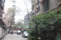 抚琴东北路小区