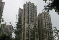 双楠尚品广场