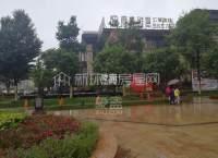 金龍國際花園