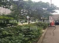 树鑫城市花园