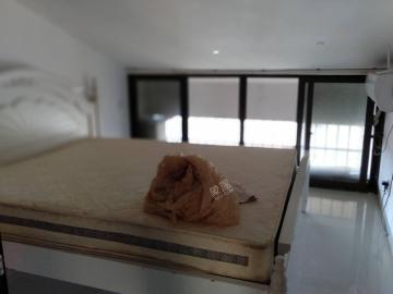 香樟林  3室2厅1卫    2800.0元/月