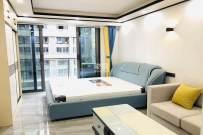 金融城二期(金融派公寓)  1室1厅1卫    1500.0元/月