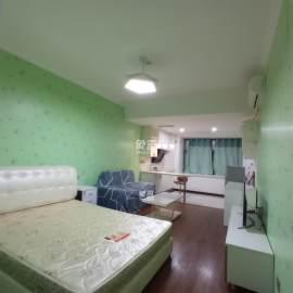 蓝湾国际 东怡外国 精装带燃气公寓 4号地铁碧沙湖站 随时看