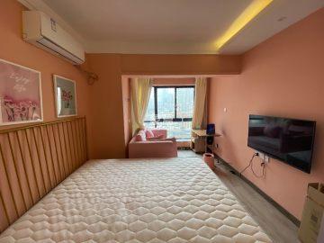 网红公寓 精装修 凯德广场 沃尔玛  随时看房 拎包入住