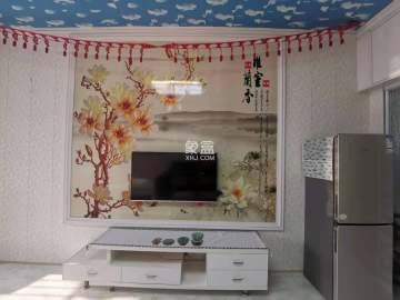 soho鸟巢  1室1厅1卫    31.8万