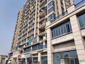 云龙示范区 碧桂园 全新精装公寓 白领的福利房
