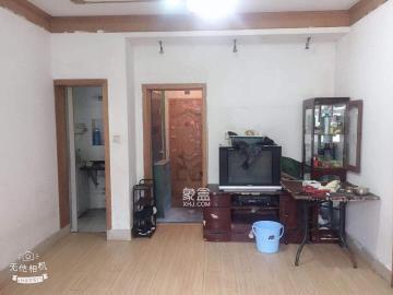 中医院宿舍  3室1厅1卫    1500.0元/月