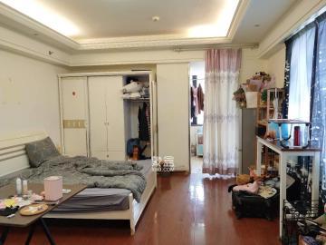 中央商业广场  1室1厅1卫    42.8万