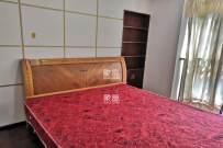 阳光新城  3室2厅1卫    2500.0元/月