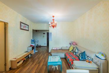 未来蜂巢  3室2厅1卫    62.8万
