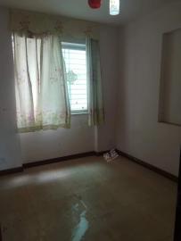 金牛生态小区  4室2厅1卫    4000.0元/月