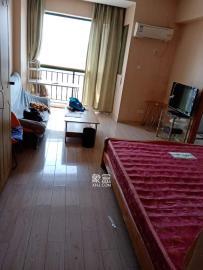 新青年公寓  1室1廳1衛    2000.0元/月