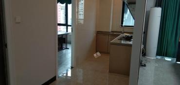 华润中心  3室2厅2卫    250.0万