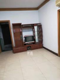 杨家山市政府宿舍  2室1厅1卫    1600.0元/月