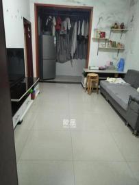 广新巷7号  2室2厅1卫    800.0元/月