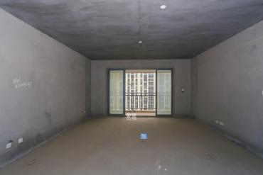 市政府 純板房 超大平層 稀有戶型 看房方便