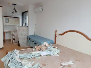 融科東南海  1室1廳1衛    2300.0元/月