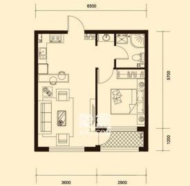 新青年公寓  1室1厅1卫    78.8万