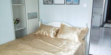 飞龙公寓  1室1厅1卫    55.8万