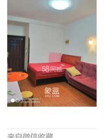 湘水1号  1室1厅1卫    1100.0元/月