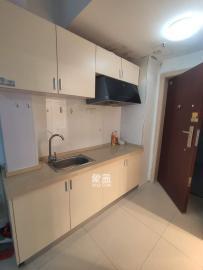 觀園國際公寓  1室1廳1衛    1800.0元/月