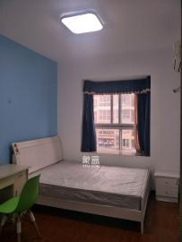 彩都公寓  1室1廳1衛    700.0元/月
