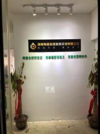 東成大廈  2室2廳1衛    3500.0元/月